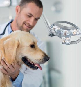 Visiano-dog veterinary lighting brochure